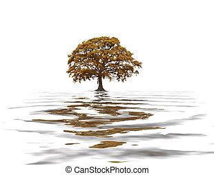 Abstract Autumn Oak Tree