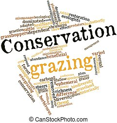 Abstract word cloud for Conservation grazing with related tags and terms