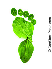 green ecology symbol foot print