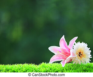 artificial pink lilly flower and wh