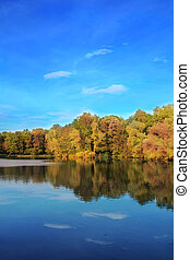 autumn trees reflecting in lake