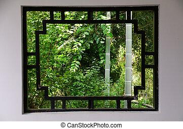 Bamboo and window