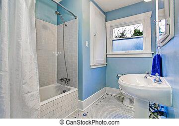 Bathroom interior in light blue tones with shower bath tub