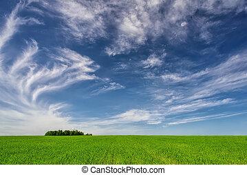 Beautiful landscape - blue sky, green grass