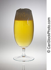 Beer goblet with beer in backlight