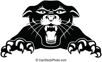 Vector illustration of black panther