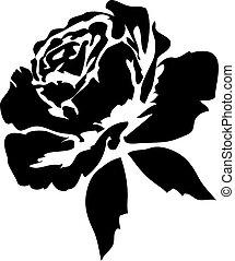 silhouette of black rose