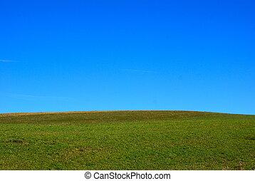 blue sky green grass