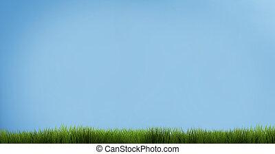 blue sky green grass. green grass 3d render