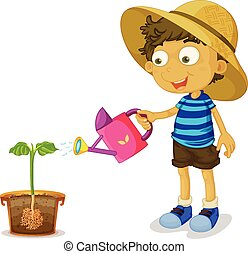 Boy watering plant on white background