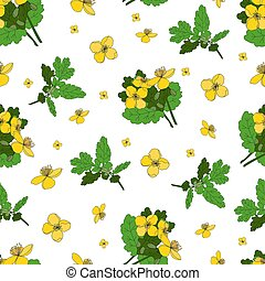 Celandine. Medicinal herbs and flowers. Seamless yellow flowers pattern on a white background