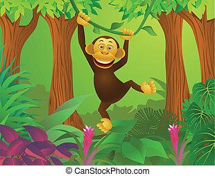 Chimpanzee in the jungle