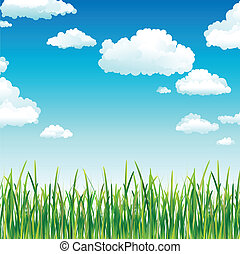 Panoramic vector illustration of spring green grass and clouds flowing above.
