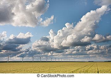 Cloudscape in the evening sunlight above Dutch crop fields
