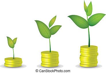 Coin tree grow