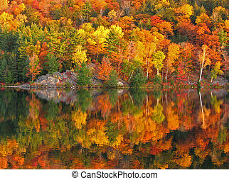 Autumn lake reflection. George Lake.