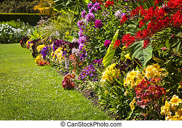 Beautiful bright colorful flower garden with various flowers