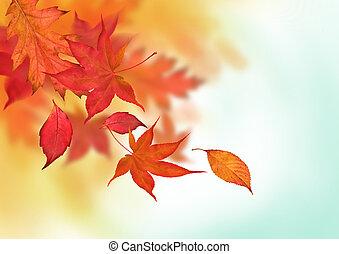 Colourful Autumn Falls