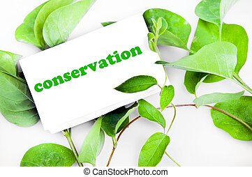 Conservation message on green leaves