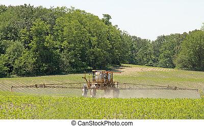 Crop sprayer applying chemicals to a corn crop