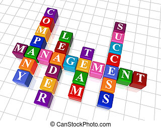 3d colour cubes crossword - management; company; leader; team; success