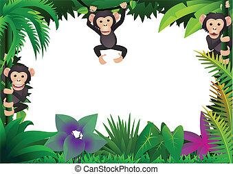 Cute chimp in the jungle