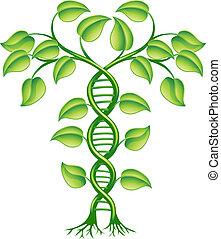 DNA plant concept, can refer to alternative medicine, crop gene modification.
