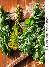 Drying medical herbs