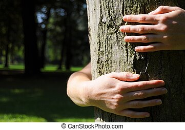 ecology eco or natore conservation concept with hand embracing a tree