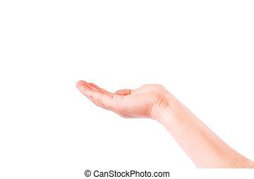 Empty child's hand, palm up