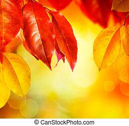 Fall. Autumn leaves