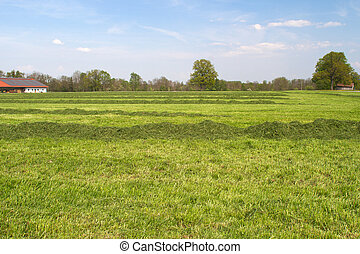 Farm land in Bavaria