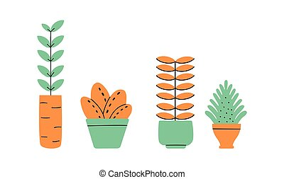 Flowerpots collection. Flowers in vases. House plants