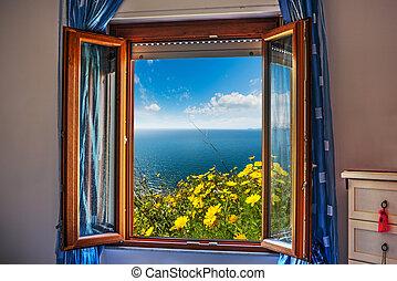 flowers seen through an open window