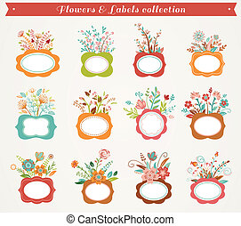 Flowers with frames - vector illustrations collection