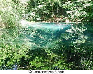 Forest river in mountains, nature landscape with trees and river.