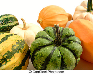 A bunch of gourds isolated on white
