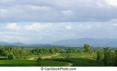 Green mountains with blue sky