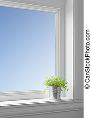 Green plant on a windowsill, with blue sky seen through the big clean window.