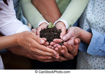 Hands Holding Plant