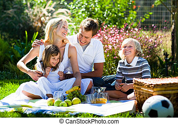 Happy family playing together in a picnic