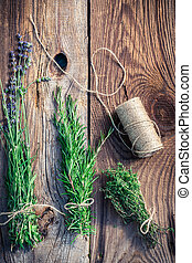 Healthy herbs before drying
