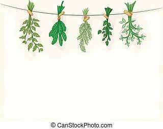 Background Illustration Featuring Herbs Being Dried