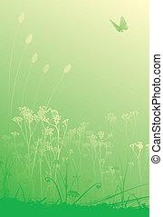 Herbs background