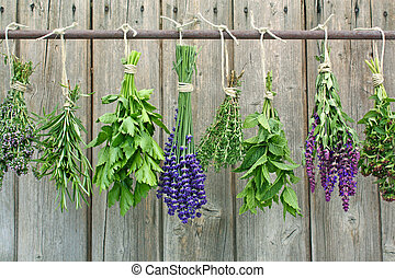 herb bundles hanging to dry on a iron rod