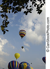 Hot Air Balloons Taking Off