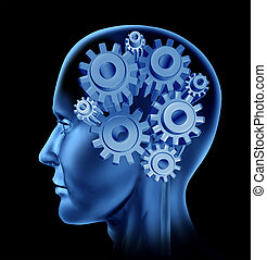 Human Intelligence And Brain Function