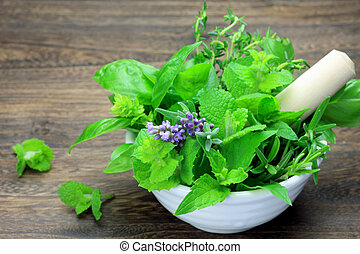 I put various herb in tableware and I took it at a dining table.