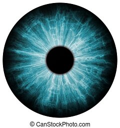 Illustration of blue eye iris, light reflection. Middle size of eyes.