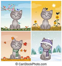 kitten in the four season